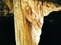 hanelova opona