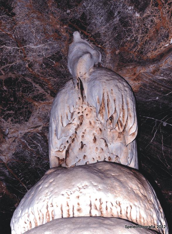 27-Figure 3